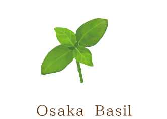 Osaka Basil