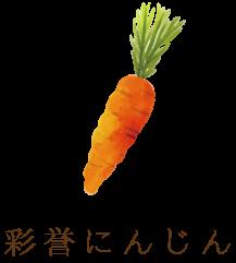 松波キャベツ